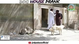 | DOG HOUSE PRANK | By Nadir Ali In | P4 Pakao | 2018