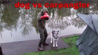 WINTER CARP FISHING dog vs carpangler WAVENEY VALLEY LAKES