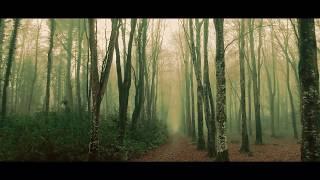 Swampy Backwoods Guitar Series Soundtracks -