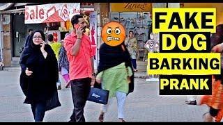 FAKE DOG BARK RUN PRANK   Pranks in Pakistan   LahoriFied
