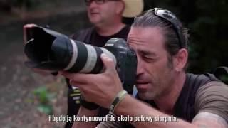 Wayne Orsler EXTREME SPORTS PHOTOGRAPHER #document - www.borntomx.pl