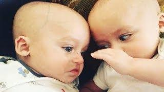 Funny Twins Baby Playing Together - Fun and Fails Baby Video