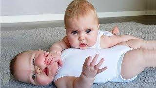 Funny Twins Baby Playing Together ???????? Funniest Baby Video
