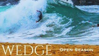 Wedge | Open Season