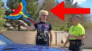 BEST Security Guard Pranks (NEVER DO THIS!!!) - POLICE MAGIC PRANKS FUNNY COMPILATION 2019