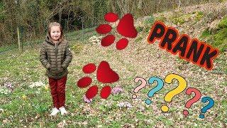 SWANN PRÉSENTE SON ANIMAL DE COMPAGNIE????PRANK 1ER AVRIL????