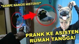 NGAKAK! PRANK PURA2 JADI ANJING!! **SAMPE NANGIS PARAH!**