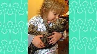 Baby and Cats cute Videos -  Funny and Cutest Babies and Pets Compilation