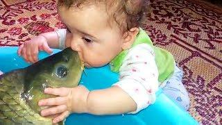 Try Not to Laugh Funny Cute Babies Kissing Compilation 2018