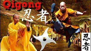 How Shaolin Monks Heal So Quickly From EXTREME Body Conditioning! (少林) Qigong Monastery☯️
