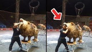 Amazing Skills LIKE A BOSS ???? People Are Insane ???? Extreme Sports Video  Being Boss 08