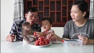 Baby Monkey   Doo Eats Rose Apple With Family -  Funny Animals