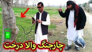 Charging wala TREE (darakht) || چارجنگ  کرنے والا درخت  funny videos pakistani