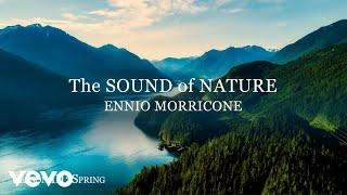 The Sound of Nature (Season 3: Spring) - Soundtracks Collection - Remastered for VEVO