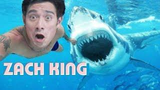 How To Magic Tricks Funny Vines Zach King Magic Tricks Revealed, Best Easy Magic Best Vines Magician