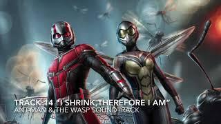 """Ant-Man & the Wasp Soundtrack - TRACK 14 """"I Shrink, Therefore I Am"""""""