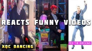 xQc Reacts to Ninja New Years Eve Cringe and Other Funny Videos