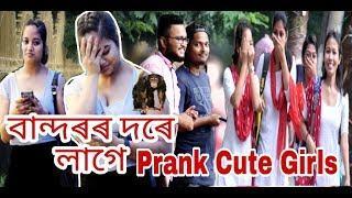 Funny Monkey Prank on Cute Girl || Prank in Assam || Guwahati Prank Star|| Comment Trolling ?