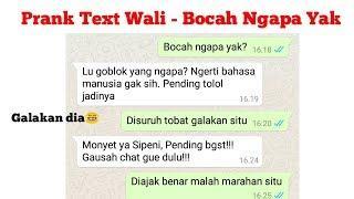 Prank Text Temen pake lagu Wali - Bocah Ngapa ya | malah galakan dia