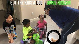 I Got The Kids A Dog (April Fools) Prank | Ft. The Lee Way, Daniel, Juliette, and Kayla