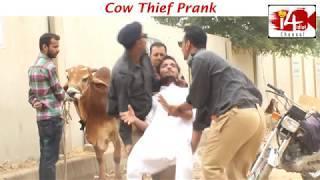 Cow Thief Prank | by Usman Khan , Arsalan Riju, Ibrahim khan | i4 idiot | New Cow prank 2018