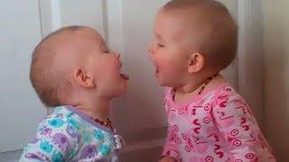 Funny Twins Baby Playing Together ???????? Cute Baby Video