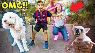 I BOUGHT A DOG WITHOUT MY MOMS PERMISSION!! *PRANK GONE WRONG* | The Royalty Family