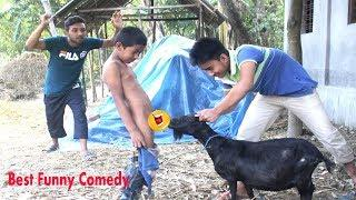 Must Wacth???????? Best Village Boys Funny Video Clips || Nw Funny Comedy Video By  Pangku Mama 2019