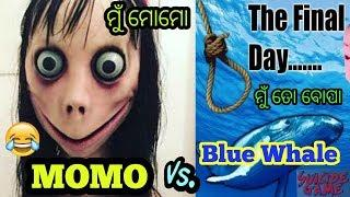 MoMo Vs Blue Whale Odia Prank Call | Berhampuriya Call Ep - 9 || Berhampur Aj..
